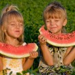 Little girl and boy with watermelon — Stock Photo #2424679