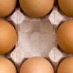 Eggs in box — Stock Photo #2529630