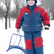 Royalty-Free Stock Photo: Boy with sledge
