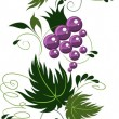 Ornament from grapes. vector — Imagen vectorial