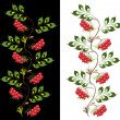 Delicate ornament from viburnum - Image vectorielle