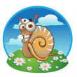 Snail on the color background — Stock Vector