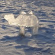 Stock Photo: Ice symbol of Chelyabinsk area