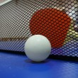 pingpong ball and racket — Stock Photo