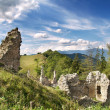Ruined Sklabina Castle — Stock Photo