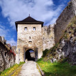 The Castle of Trencin - Gate — Stock Photo #2229300