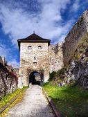 The Castle of Trencin - Gate — Stock Photo
