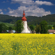 Meadow and old church — Stock Photo #2233251