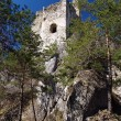 Stock Photo: Ruined Hricov castle