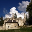 Sklabina Castle and Manor house — Stock Photo #2336756
