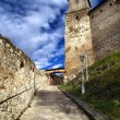 Stock Photo: Trencin Castle entrance