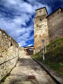 Trencin Castle entrance — Stock Photo