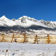 Stock Photo: the tatra mountains
