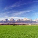 The Tatra Mountains & green field — Stockfoto