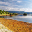 Shore - LiptovskMarLake — Stockfoto #2416398
