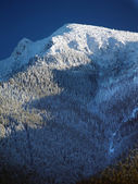Peak of choc mountain — Stock Photo