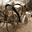Stock Photo: Fable Carriage
