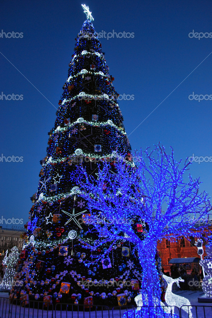 Main Christmas Tree and Ice Decorations on the Square of Freedom in the Kharkiv City, Ukraine  Stock Photo #1824631