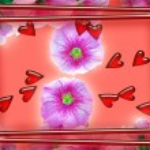 Pink Love — Stock Photo