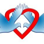 Romantic Doves — Stock Photo #2562260