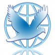 Dove Of Peace — 图库照片