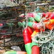 Stock Photo: Red and green crab floats