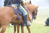 Detail, Union cavalry sergeant — Stock Photo