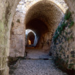 Entrance maze of Krak des Chevaliers — Stock Photo #1444136