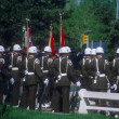 Stock Photo: Military honor guard