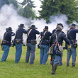 Union infantry line firing - Stock Photo