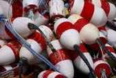 červené a bílé krabí plave — Stock fotografie