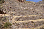 Terraced Inca fields — Stock Photo