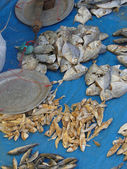 Dried fish for sale — Stock Photo