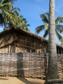 Thatched huts and palm trees — Foto Stock