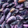 Royalty-Free Stock Photo: Detail, scarlet runner beans, dried