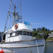 Fishing boats at anchor in marina in Yaquina Bay - Foto de Stock