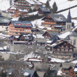 Alpine village and chalets - Stock Photo