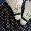 Badminton equipment — Stock Photo #1447926
