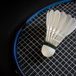 Badminton equipment — Stock Photo #1463261