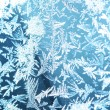 Stock Photo: An ornament of frost