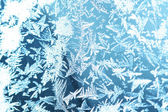 An ornament of frost — Stock Photo