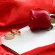 Red rose and blank card — Stock Photo #1983248