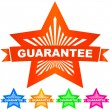 Vector guarantee label - Stock Vector
