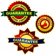 Stock Vector: Guarantee label.