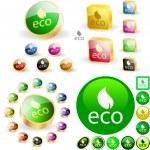 Eco button. — Stock Vector