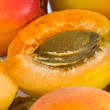 Stock Photo: Apricot nucleus
