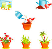 Icons on growing window plants — Stock Vector