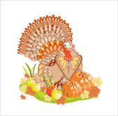 Harvest/Thanksgiving Turkey — Vector de stock