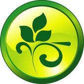 Design floral green button — Stock Vector