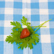 Stock Photo: Strawberry and plant on fabric background